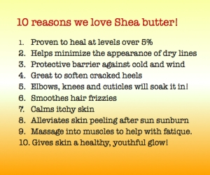 Winter is harsh and Shea butter is your  skin's best defense!