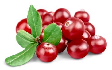 Cranberry, Vitamin Pill, Leaf.